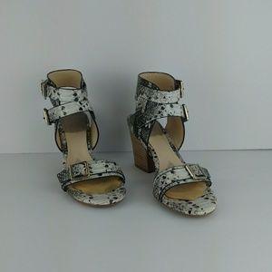 Isola block heel sandals buckle snake python print